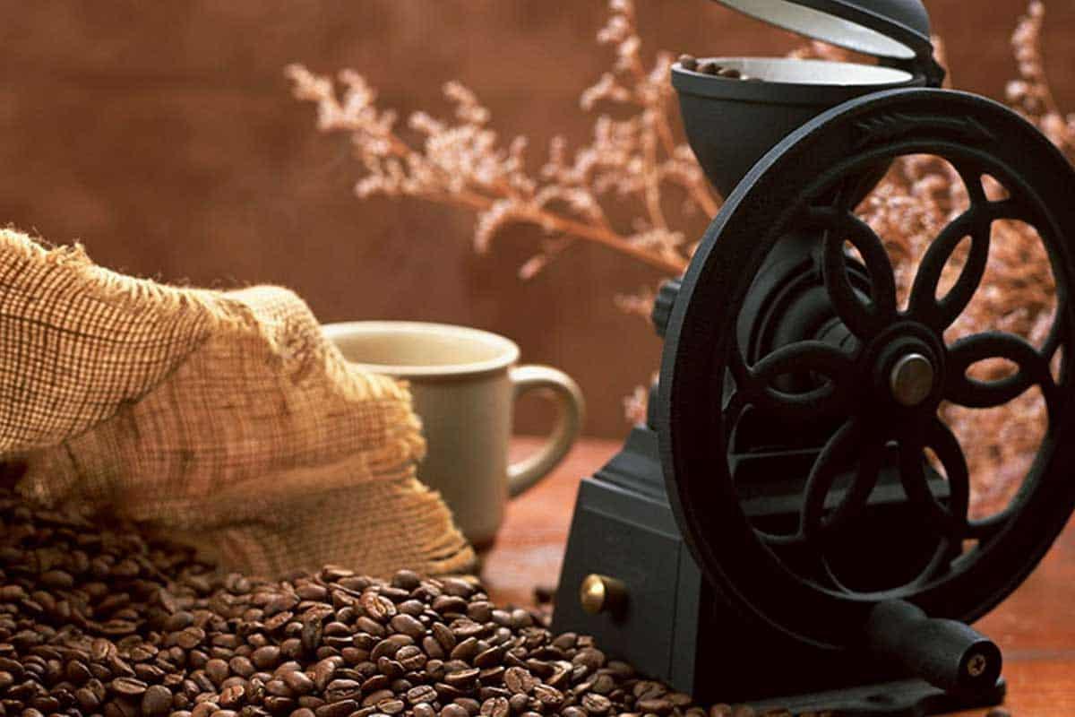Bạn đã biết cách đánh giá chất lượng hạt cafe rang xay? 1