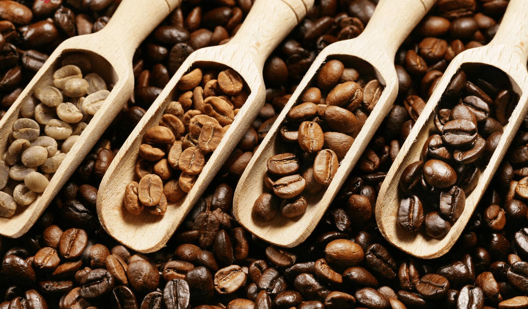 nguồn gốc của bột cafe